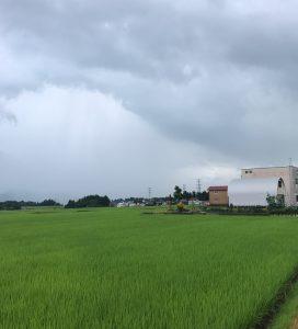 新潟出張☆豪雨。